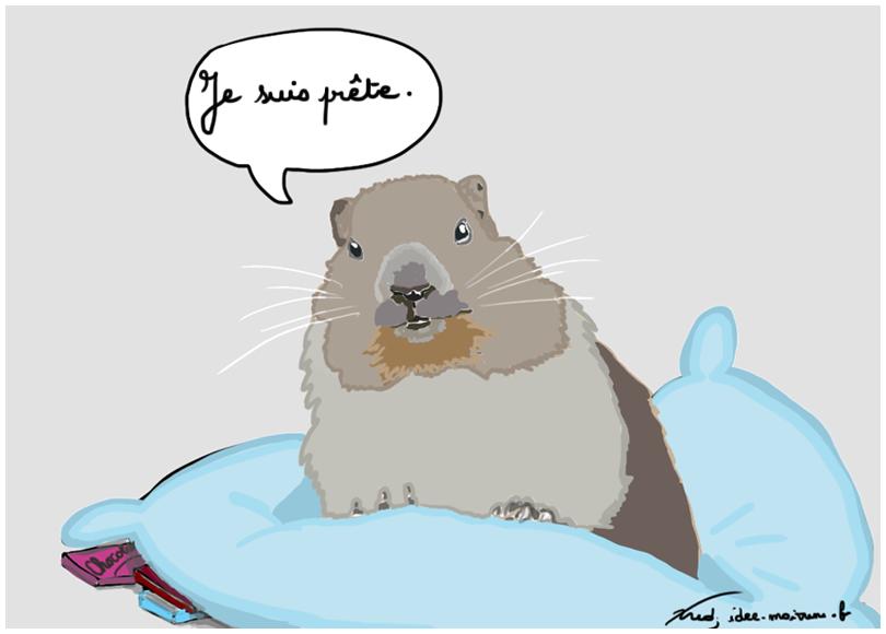 Marmotte-prete